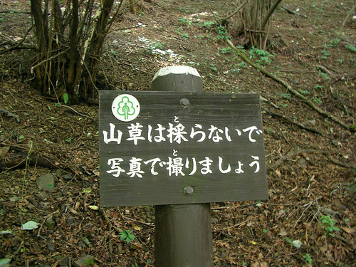 岩茸石から白谷沢(しらやさわ)登山口へ(棒ノ折山トレッキング) Mt.Bounooreyama