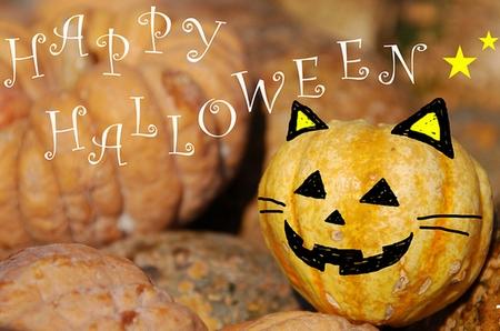 ハロウィンかぼちゃ画像