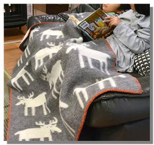 毛布ソファーで使用
