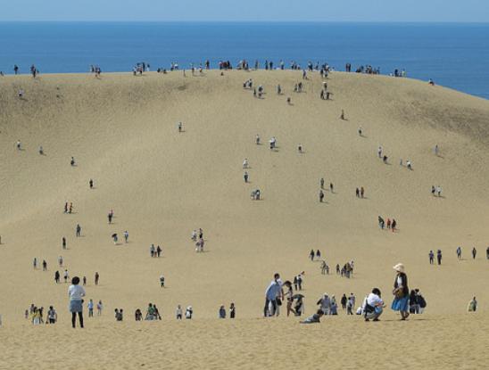 砂丘の画像